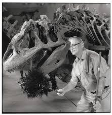 weird jobs portraits of unusual occupations unusual dinosaur duster music thanatologist