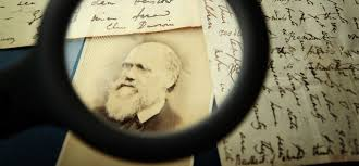 4 Innovation Lessons From Charles Darwin | Inc.com