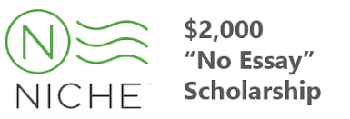 college scholarships   financial aid   scholarshipscom niche no essay scholarship