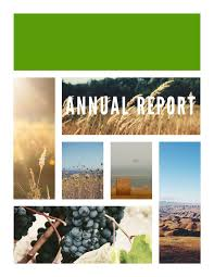 annual report templates examples lucidpress nebraska annual report template