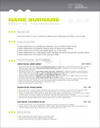 innovative resume builder professional templates template word gallery of professional resume templates