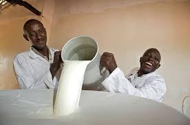 Отказавшись от продуктов Запада, Россия будет покупать молочку в Африке - Цензор.НЕТ 9213
