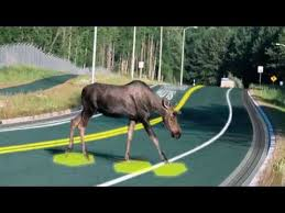 Solar Roadways – Solar Panels For Every Walking And Driving ...