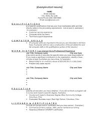 computer skills resume administrative brief resume example    computer skills resume administrative brief resume example computer computer skills resume administrative