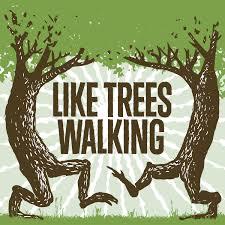 Like Trees Walking