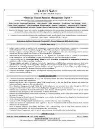 resume samples cv template cv sample strategic human resource management expert page 1