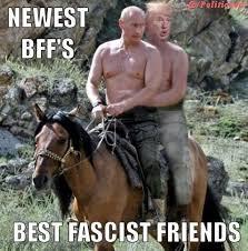Image result for trump memes