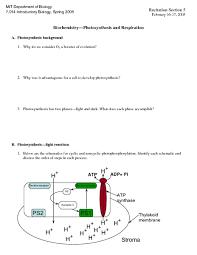 photosynthesis worksheet ap biology essay  essay for you  photosynthesis worksheet ap biology essay  image