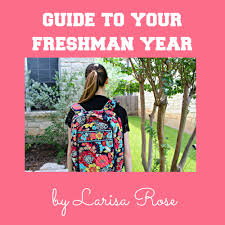 college love larisa rose guide to your freshman year of college roommates peers professors oh my