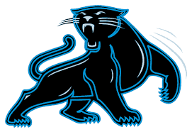 Image result for images of panthers logo
