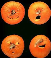 Afbeeldingsresultaat voor pompoenen