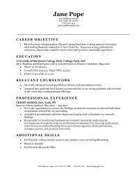 entry level sales resume objective statements smlf resume resume objective statement examples human entry level objective resume