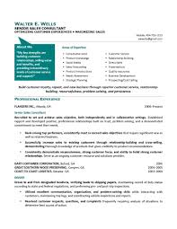 senior engineer resume examples cipanewsletter cover letter engineering executive resume engineering executive