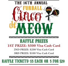 fun raffle flyer how cute is this fundraising idea the th fun raffle flyer how cute is this fundraising idea the 14th annual furball cinco