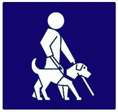 accueil handicap visuel