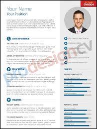 professional cv cv prodesigncv professional cv cv0304