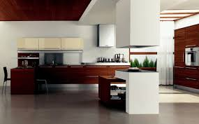 astounding home interior modern kitchen kitchen modern kitchen style astounding home interior modern kitchen