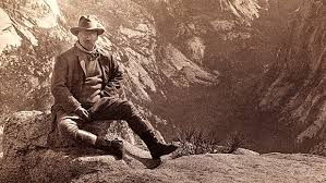 「1908, grand canyon named naitonal park」の画像検索結果