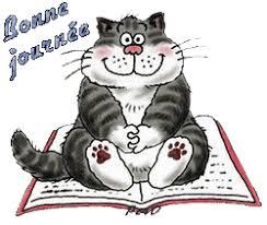 """Résultat de recherche d'images pour """"gif bonne journée chat"""""""