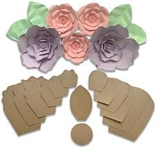 <b>Cardstock</b> for <b>Paper Flower</b>: Amazon.com