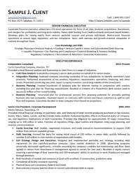 senior financial executive resumefree resume templates