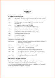 cv qualifications example event planning template resumebusinessprocess julian sonn mini cv academic qualifications professional by monkey6