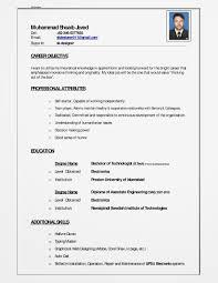 muhammad shoaib javed my curriculum vitae cv online cv dae cv cv for btech technician in rawalpindi muhammad shoaib