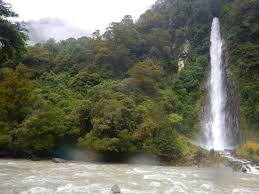 <b>Short</b> Forest <b>Walk beside</b> HAAST highway leading to Falls - Review ...