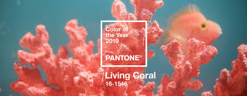 The Pantone Color of <b>2019</b> Is <b>Warm</b>, Glorious, and Connects Us to ...