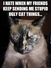 Ugly Cat memes | quickmeme via Relatably.com