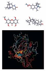 <b>Natural</b> products and drug discovery