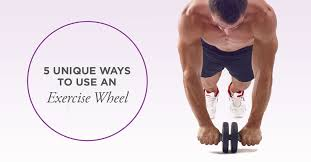 Exercise <b>Wheel</b>: How to Use Effectively