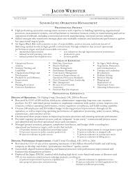 executive cv template and writing guidelines livecareer executive cv template