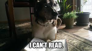 Troubled Realization Dog memes | quickmeme via Relatably.com