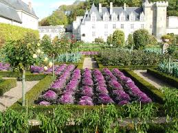 Image result for loire valley garden