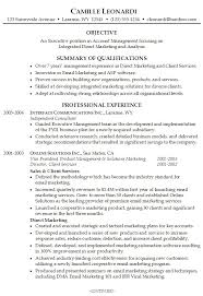 resume examples resume professional summary sample resume professional summary for resume summary example resume