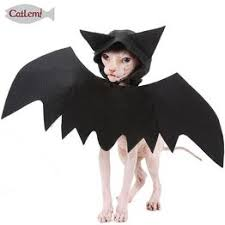 <b>Halloween pet bat</b> wings black cool puppy cat <b>bat</b> hooded <b>costume</b>