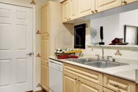 Apt Kitchen Apt Kitchen Ideas All About Kitchen Photo Ideas