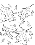 Листопад раскраски