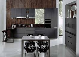 Cleveland Kitchen Cabinets Discount Kitchen Cabinets Cleveland Ohio Zitzatcom