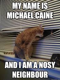 My name is michael caine and i am a nosy neighbour - Peeping ... via Relatably.com