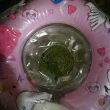 Детский <b>круг для купания на</b> шею – купить в Майкопе, цена 300 ...