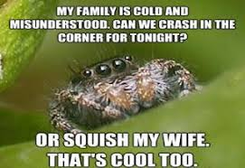 Best of Misunderstood House Spider Meme - Gallery | eBaum's World via Relatably.com