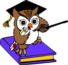 Výsledek obrázku pro animated owl wallpaper