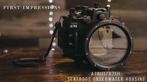 First Impressions of <b>Seafrogs</b> Underwater Housing for Sony A7Riii ...