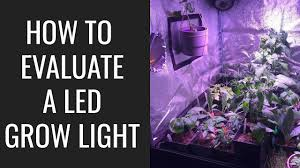 3 Things You MUST Know Before Buying an <b>LED Grow Light</b> ...