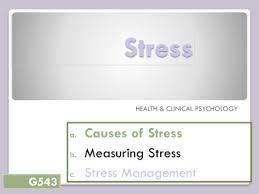 causes of stress in college students essay   sludgeportwebfccom causes and effects of stress on high school and college students