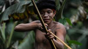 Beyond North Sentinel: A look at uncontacted and isolated <b>tribes</b>