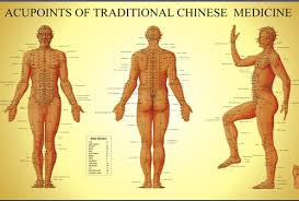 Image result for acupuncture photos