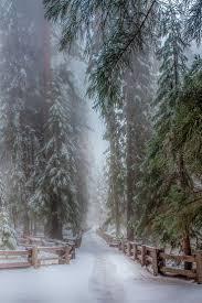 <b>Everlasting Love</b>   <b>Winter</b> scenery, <b>Winter</b> love, <b>Snow</b>